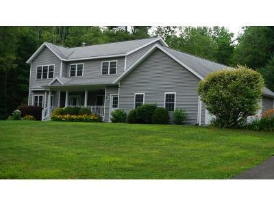 Owego Single Family Home For Sale: 1885 Allen Glen Road