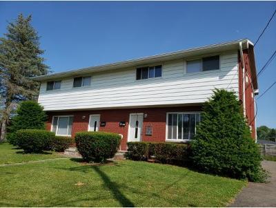 Endicott Multi Family Home For Sale: 218 Frey Avenue