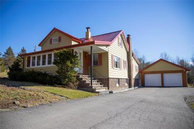 Whitney Point Single Family Home For Sale: 160 Kales Hill Road