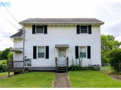 Endicott Multi Family Home For Sale: 3644 Hoover Ave