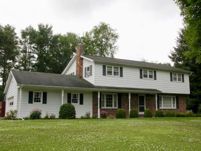 Apalachin Single Family Home For Sale: 506 Marshland Road