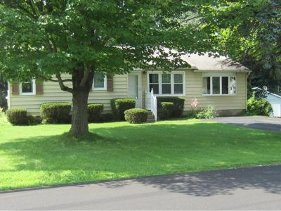 Apalachin Single Family Home For Sale: 12 Standish Drive