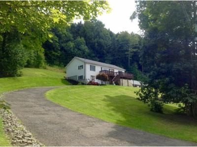 Endwell Single Family Home For Sale: 382 Edson Road