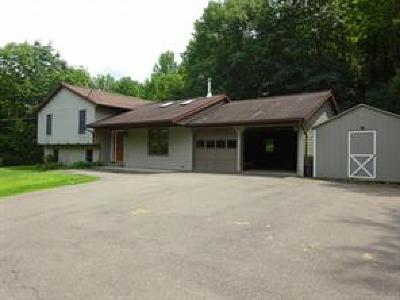 Broome County, Cayuga County, Chenango County, Cortland County, Delaware County, Tioga County, Tompkins County Single Family Home For Sale: 5258 Day Hollow Road