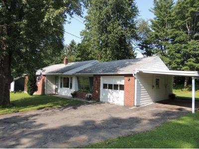 Apalachin Single Family Home For Sale: 23 Griffin Dr
