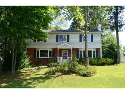 Apalachin Single Family Home For Sale: 5 Woodside Road