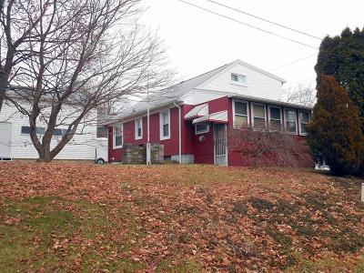 Johnson City Single Family Home For Sale: 713 Newark Avenue