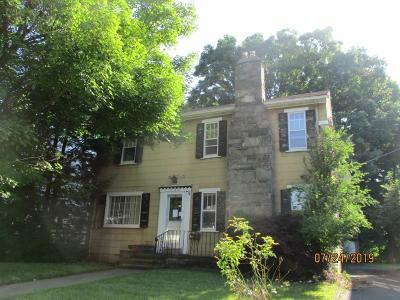 Endwell Single Family Home For Sale: 323 Marion Ave