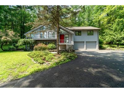 Binghamton Single Family Home For Sale: 29 Broad Acres Drive