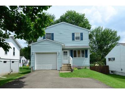 Endicott Single Family Home For Sale: 1012 Irving Ave.