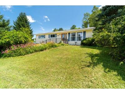 Apalachin Single Family Home For Sale: 45 Frederick