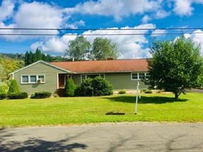 Apalachin Single Family Home For Sale: 112 Barton Road