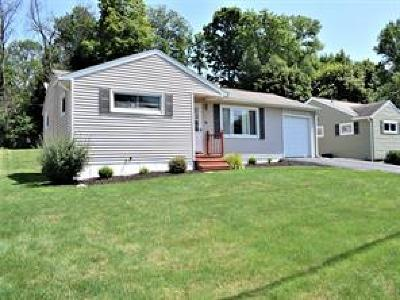 Endwell Single Family Home For Sale: 322 Doyleson Ave