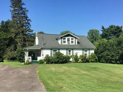 Tioga County Single Family Home For Sale: 5996 Route 17c