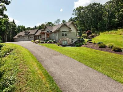 Broome County Single Family Home For Sale: 473 Bunn Hill Road