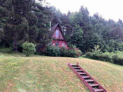 Windsor Single Family Home For Sale: 5 Deer Run Road