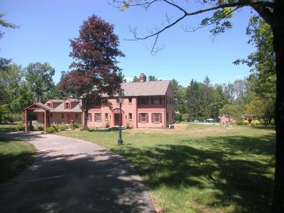 Vestal Single Family Home For Sale: 3413 Almar Drive