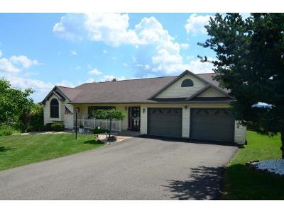 Endicott Single Family Home For Sale: 1409 Elmira Street