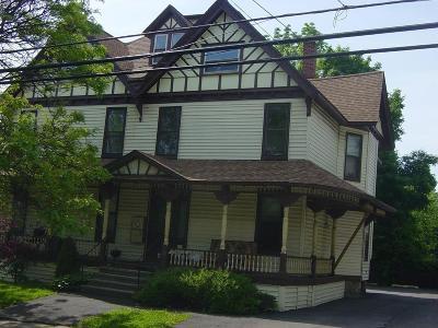 Broome County Multi Family Home For Sale: 59-61 Seminary Ave Portfolio