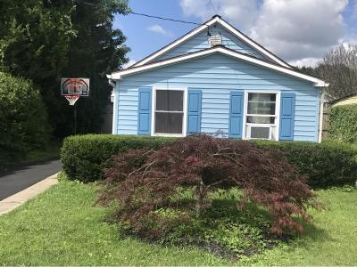 Johnson City Single Family Home For Sale: 151 Hudson