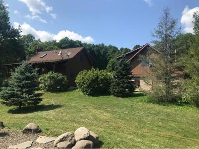 Broome County Single Family Home For Sale: 59 Parker Rd