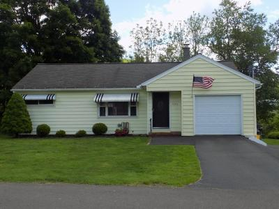 Binghamton Single Family Home For Sale: 1302 Chase Ave
