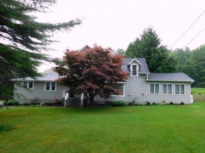 Binghamton Single Family Home For Sale: 2140 Nys Route 12