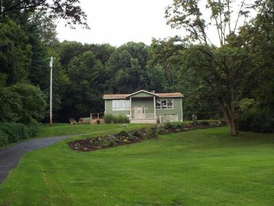Owego Single Family Home For Sale: 169 Glenmary Dr