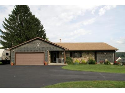 Endwell Single Family Home For Sale: 1722 Farm To Market