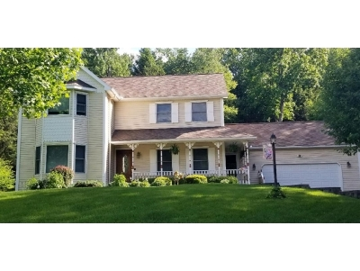 Apalachin Single Family Home For Sale: 4 Springtree Blvd