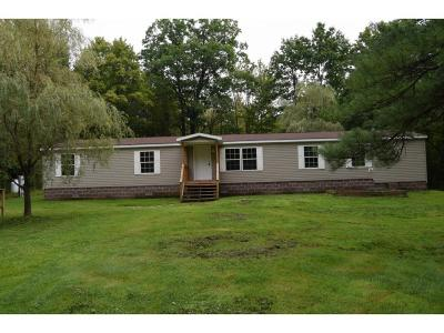 Binghamton Single Family Home For Sale: 673 Park Ave
