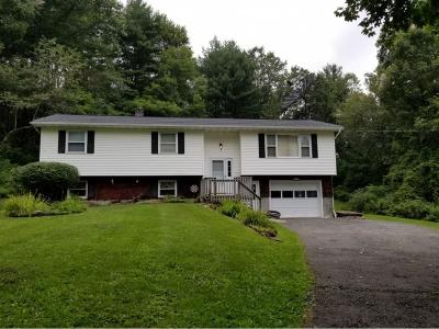 Chenango Forks Single Family Home For Sale: 229 Marshman Road