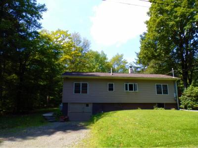 Broome County Single Family Home For Sale: 9 Wagon Wheel