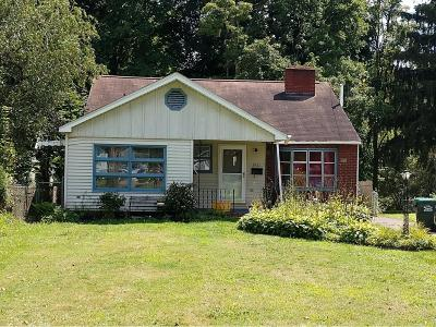 Broome County Single Family Home For Sale: 916 Old Vestal Road