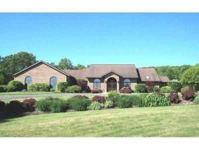 Binghamton Single Family Home For Sale: 7 Meadowood Lane