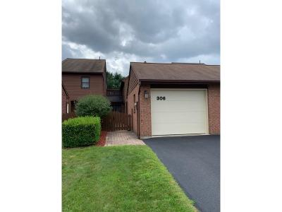 Endwell Single Family Home For Sale: 306 Patio Drive
