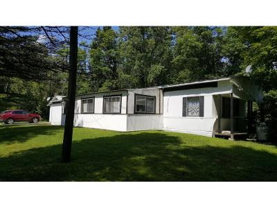 Newark Valley Single Family Home For Sale: 32 Courtright Hill Rd.
