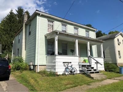 Owego Multi Family Home For Sale: 118 Franklin Street