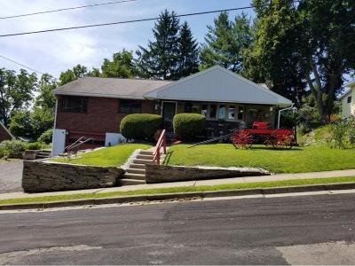 Johnson City Single Family Home For Sale: 115 N Harrison St