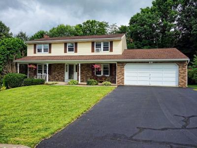 Endwell Single Family Home For Sale: 941 Debonair Drive