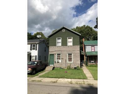 Owego Single Family Home For Sale: 100 Paige Street