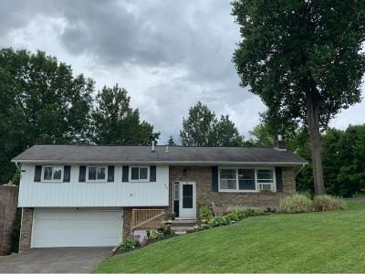 Endwell Single Family Home For Sale: 1009 Holly Lane