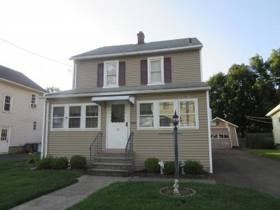Johnson City Single Family Home For Sale: 19 Riale Ave