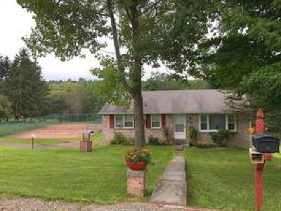 Apalachin Single Family Home For Sale: 804 Beach Rd