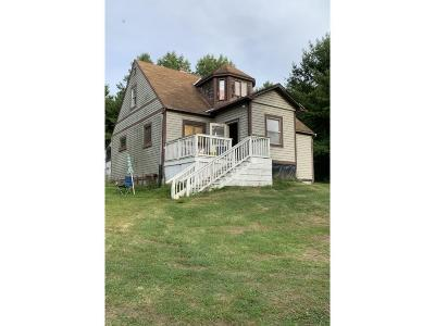 Owego Single Family Home For Sale: 3291 Sulphur Springs Rd.