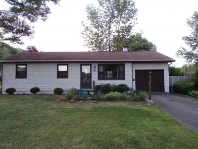 Endwell Single Family Home For Sale: 3511 Phyllis St