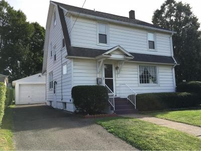 Johnson City Single Family Home For Sale: 58 Hill Ave