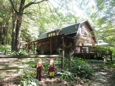 Chenango Forks Single Family Home For Sale: 93 Beartown Road