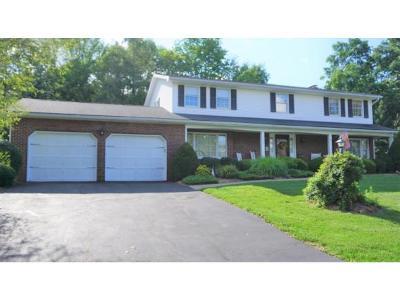 Endicott Single Family Home For Sale: 1109 Elton Drive