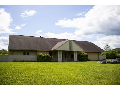 Chenango Forks Single Family Home For Sale: 5 Brookside Lane